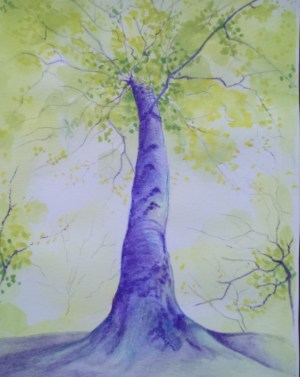 watercolour pencil - sketchbook - leafy trees