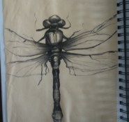 Dragonfly - charcoal