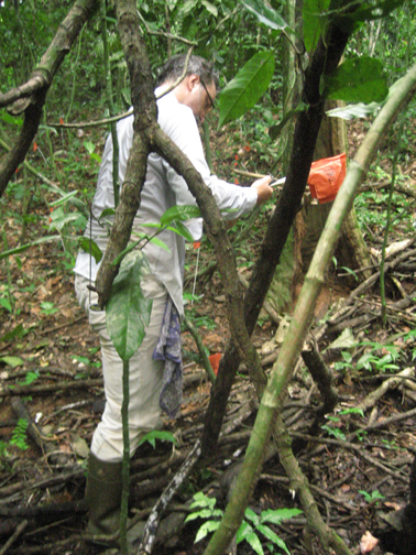 Science on the hoof: Mike does fieldwork on BCI.