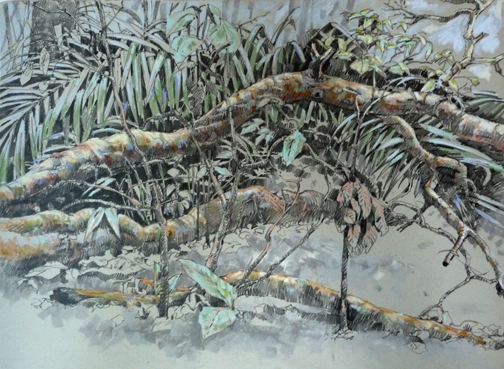 """A fallen branch creates a clearing in the forest; the light it admits to smaller trees more than makes up for the mess it makes. 18""""x24"""" graphite and pastel on Rives BFK."""