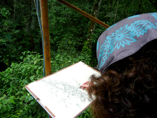 """This is how you get things done in the rainforest tower: bungee cords! The 18""""x25"""" drawing board has a bungee attached at either end and hooked under the pipes. I drew standing up on the small platform. This is about 75 feet up. I was drawing a beautiful monstera vine on the trunk of a great tree."""