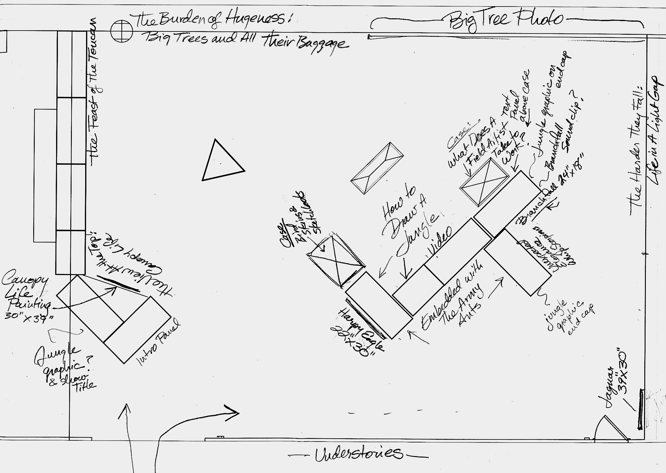 Floor plan for Drawing the Motmot: An Artist's View of Tropical Nature, Sam Noble Oklahoma Museum of Natural History.