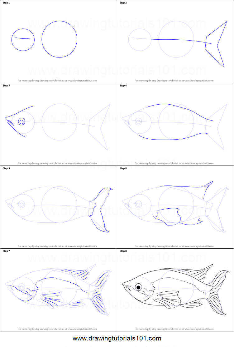 How To Draw A Rainbow Fish : rainbow, Rainbow, Printable, Drawing, Sheet, DrawingTutorials101.com