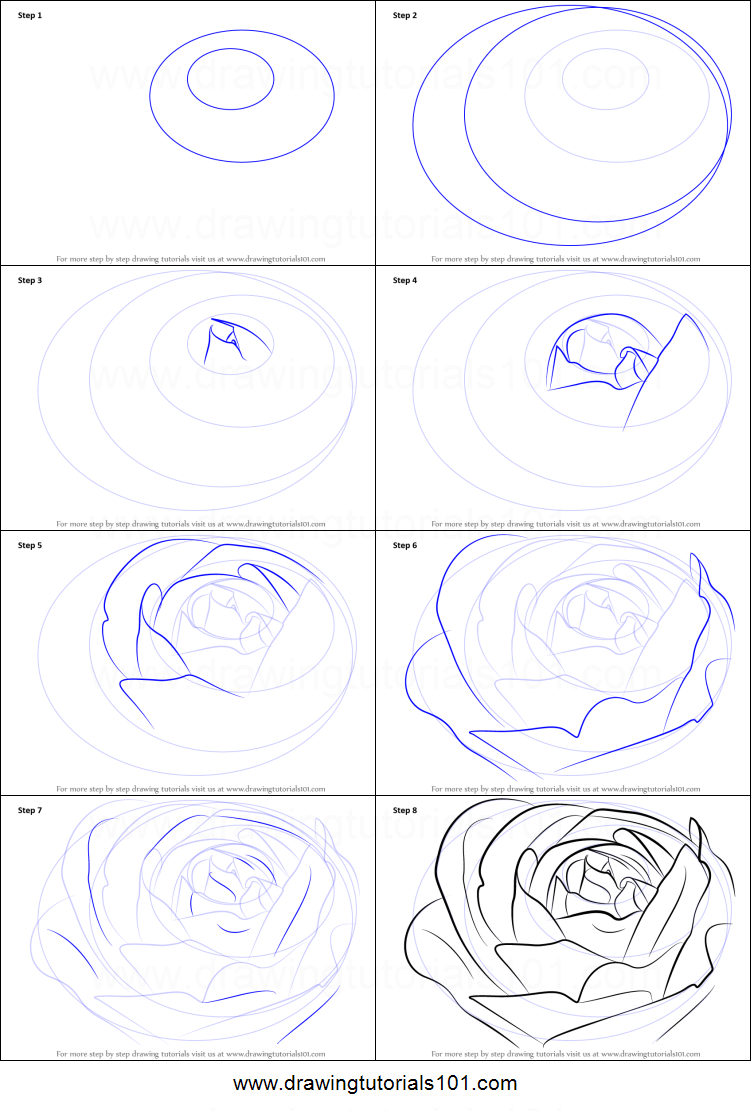 How To Draw A Rose Bud : Printable, Drawing, Sheet, DrawingTutorials101.com