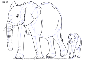 elephant draw sketch step drawing zoo animals sketches tutorial improvements necessary finish tutorials drawingtutorials101