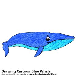 Learn How to Draw a Cartoon Blue Whale Cartoon Animals Step by Step : Drawing Tutorials