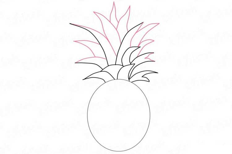 How to draw a Pineapple: Cute, Step by Step, Simply and Easily