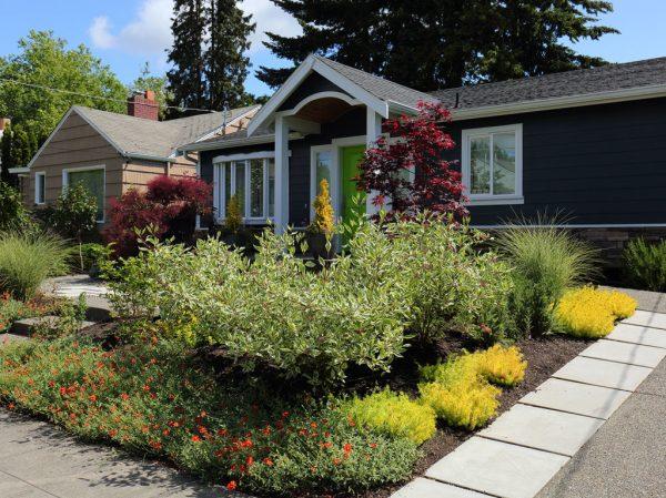 garden creation -lawn front