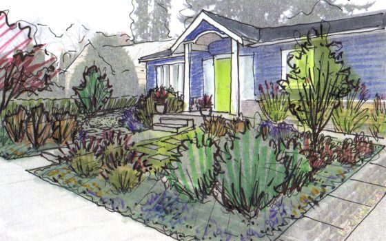 Image result for front yard drawing