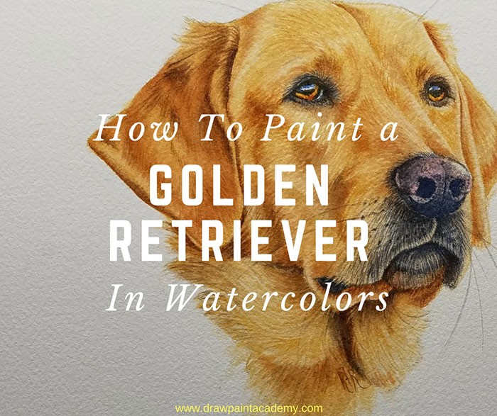 How To Paint A Golden Retriever Using Watercolors