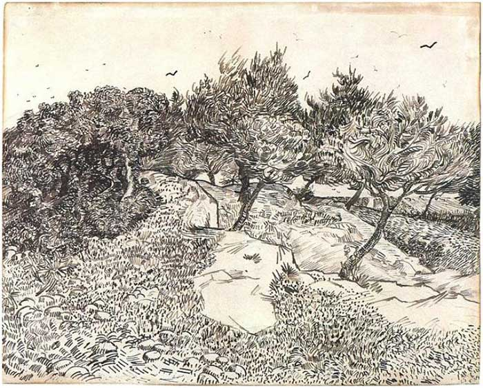 Vincent van Gogh, Olive Trees, 1888