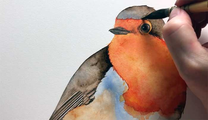 3. Watercolor Robin