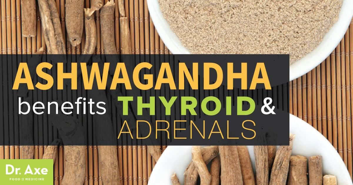 Ashwagandha Benefits Thyroid And Adrenals Dr Axe