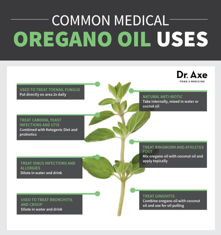 Oregano Oil Benefits Superior To Prescription Antibiotics