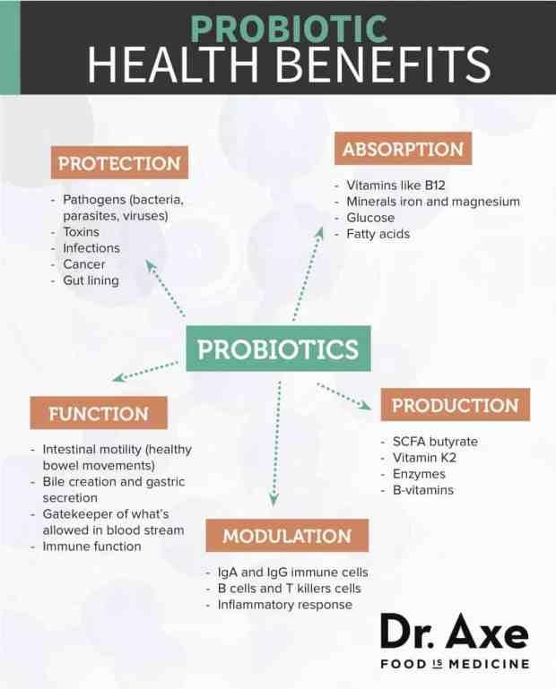 Probiotic Health Benefits Diagram