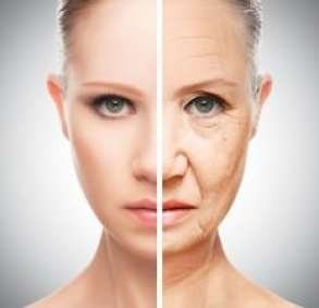 anti-aging properties woman's skin