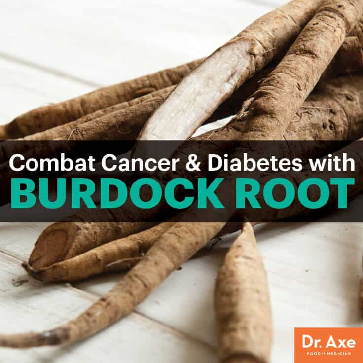Burdock root - Dr. Axe