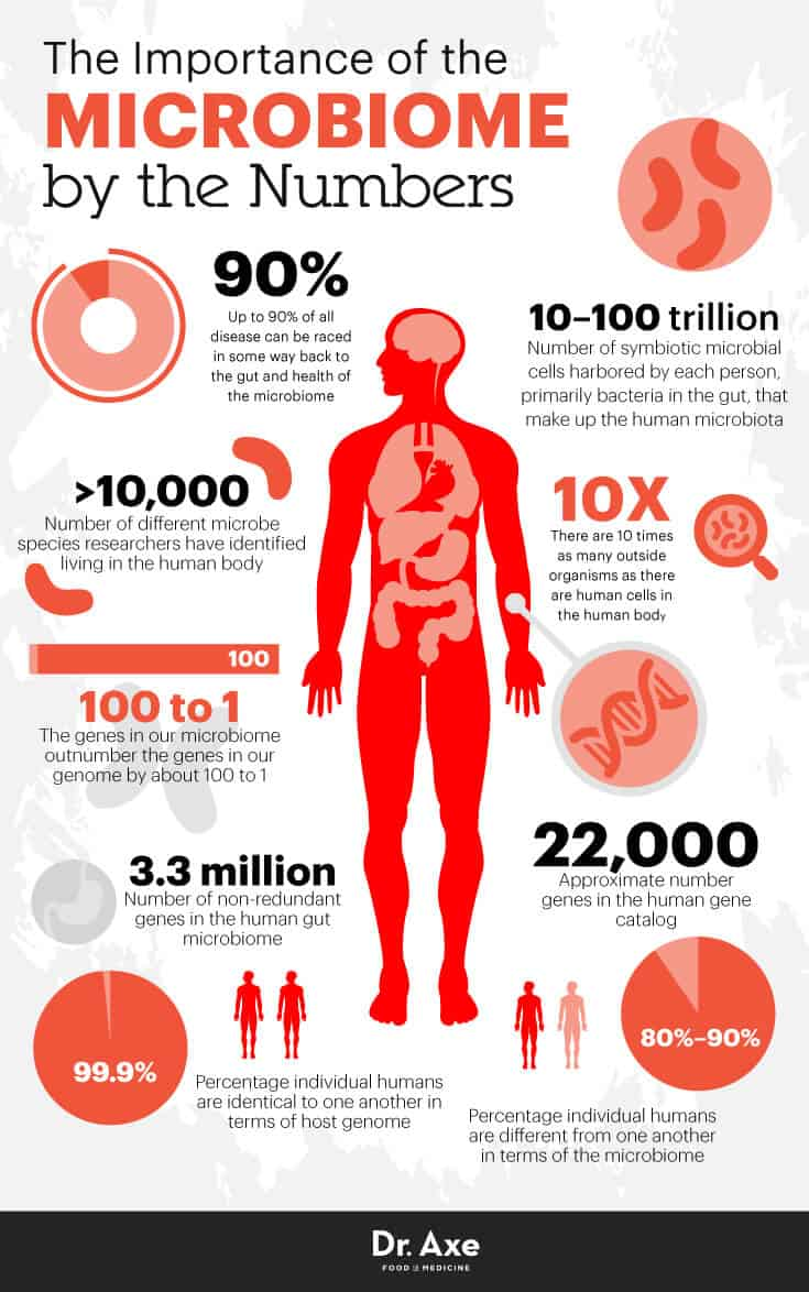 Microbiome by the numbers - Dr. Axe
