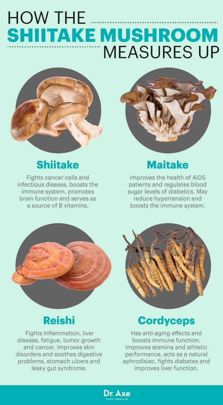 Shiitake Mushrooms 8 Scientifically Proven Benefits Dr Axe