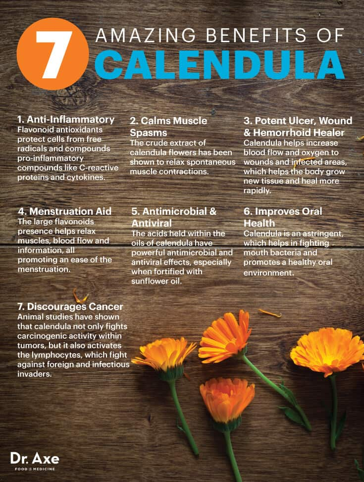 Calendula The Anti Inflammatory Antiviral Healing Herb