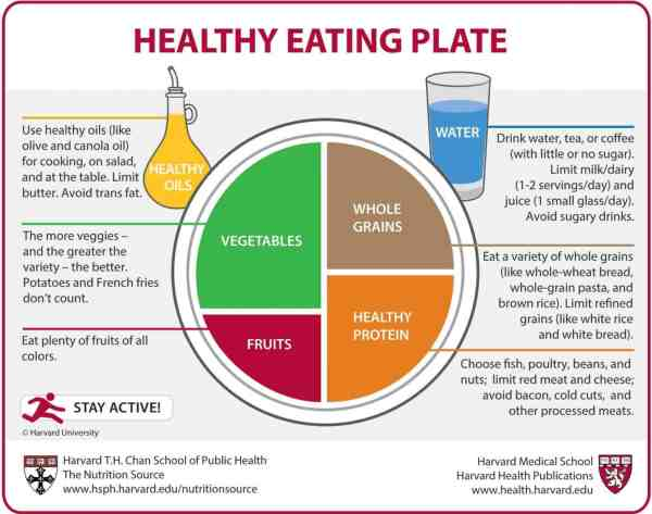 Healthy eating plate - Dr. Axe