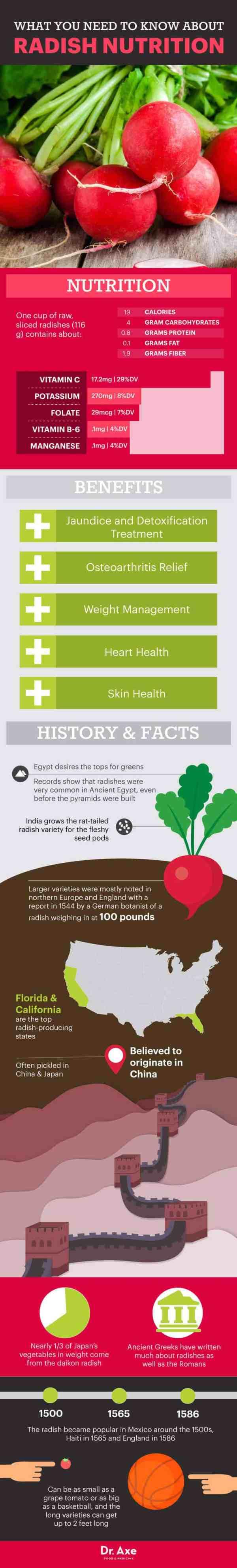 Radish Nutrition Health Benefits amp Recipes Dr Axe