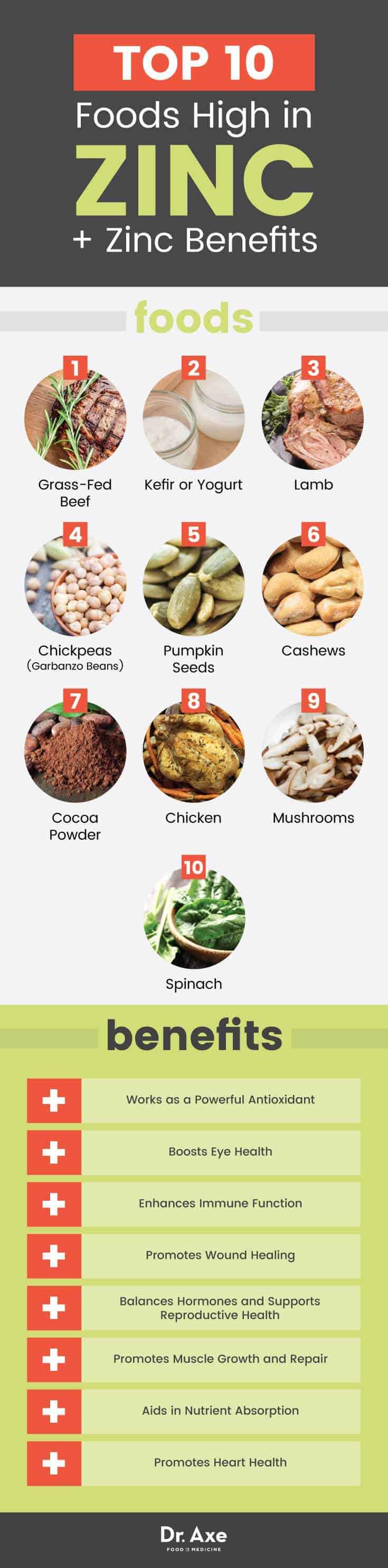 Top 15 Foods High in Zinc and Their Health Benefits  Dr Axe