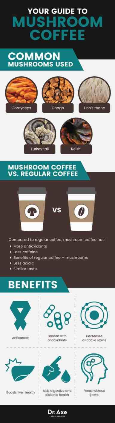 mushroom coffee benefit char