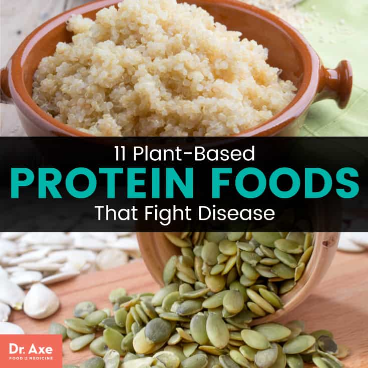 Plant-based protein - Dr. Axe