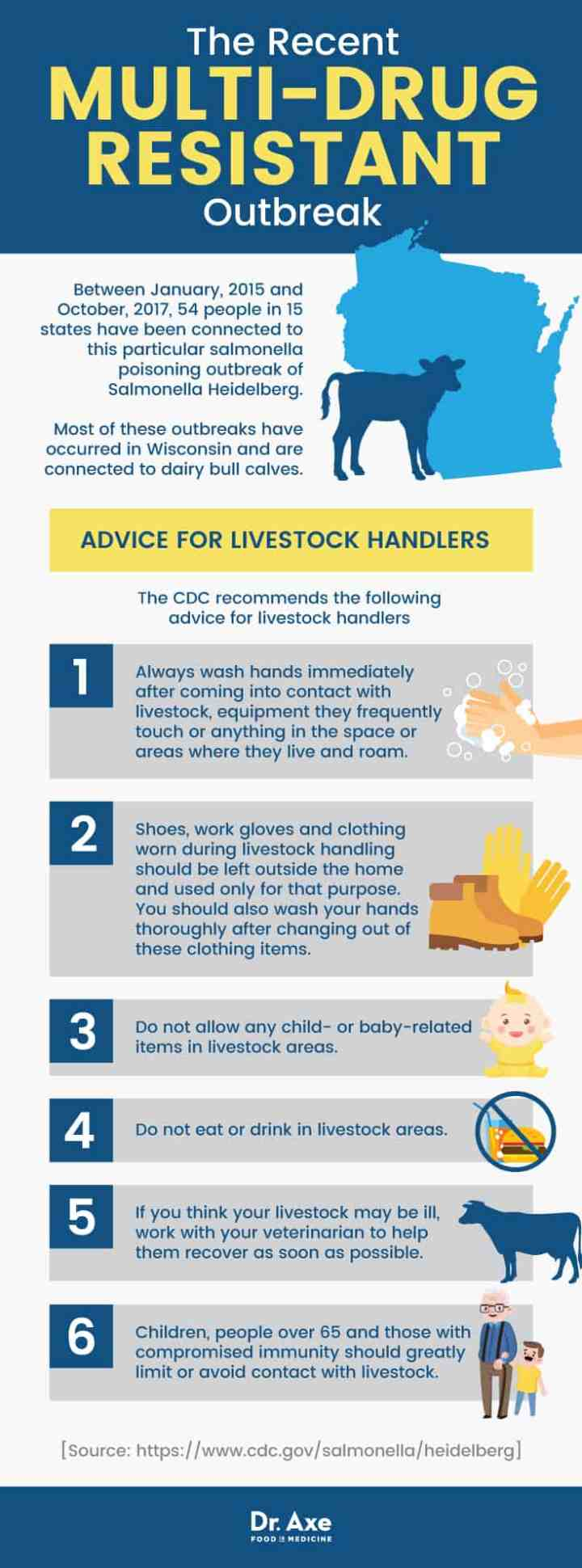 Salmonella poisoning: advice for livestock handlers - Dr. Axe