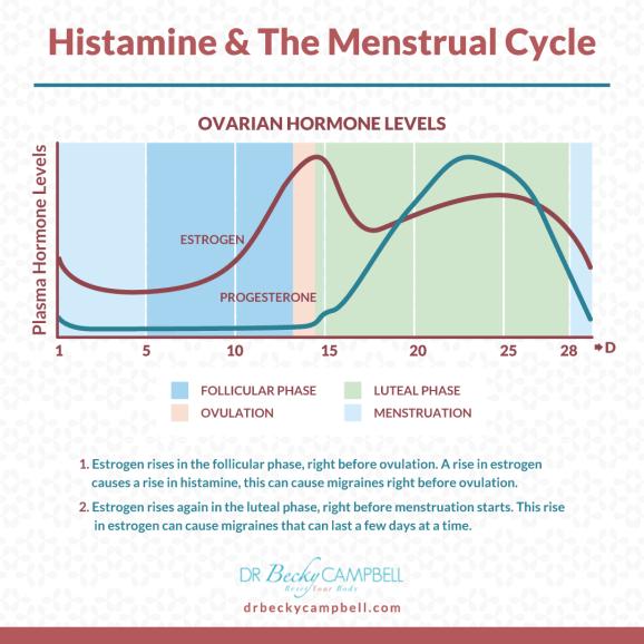 menstrual cycle & histamine