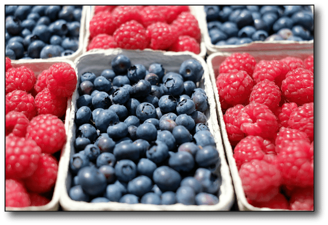 Fruit and Fat Berries