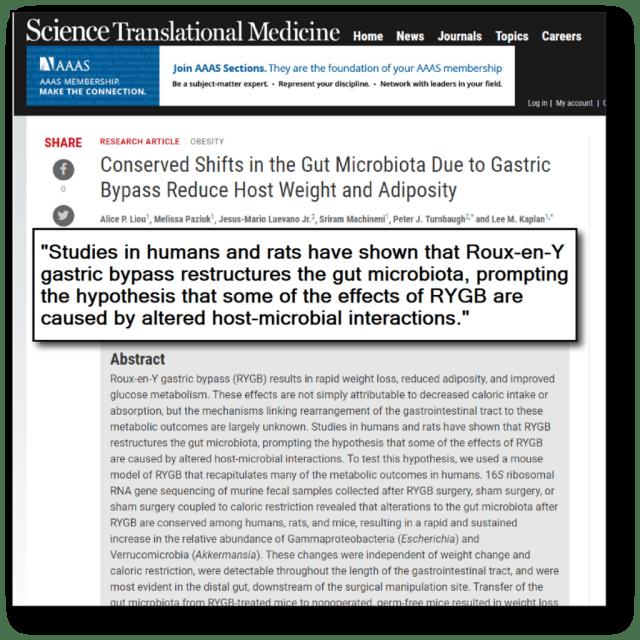 probiotics and fat loss - mice experiment