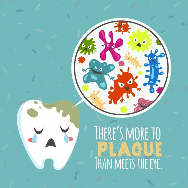Bacteria make plaques in mouth