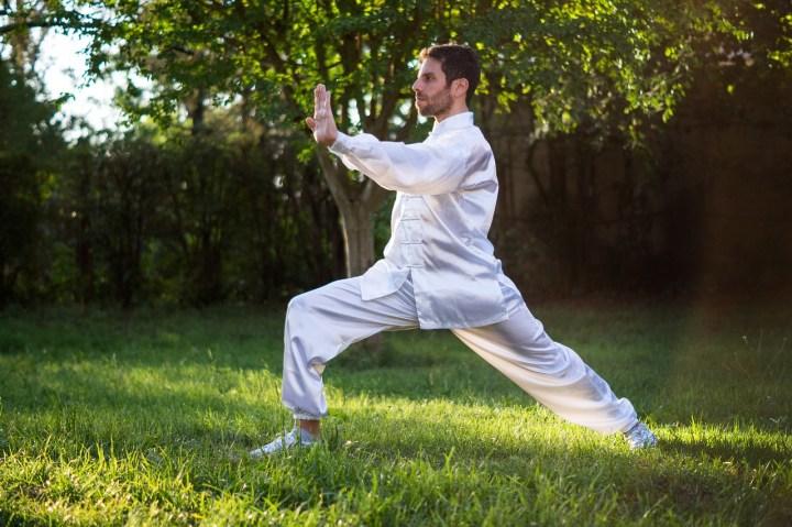 tai chi, virtual exercise program