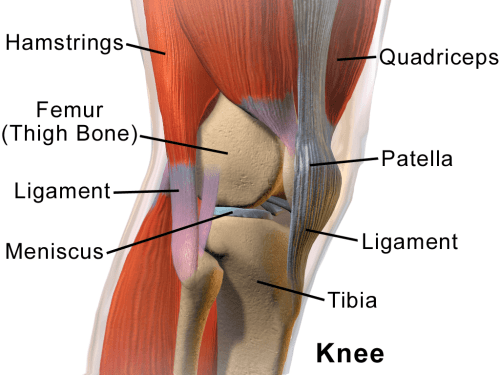 small resolution of chronic knee pain