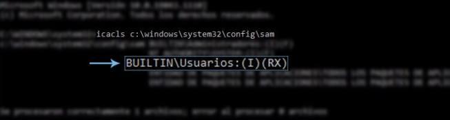 vulnerabilidad en Windows 10