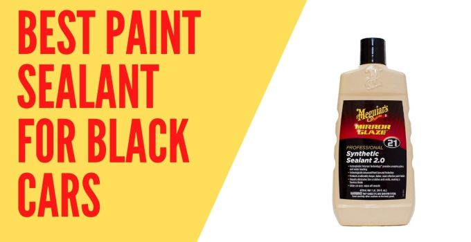 Best Paint Sealant For Black Cars