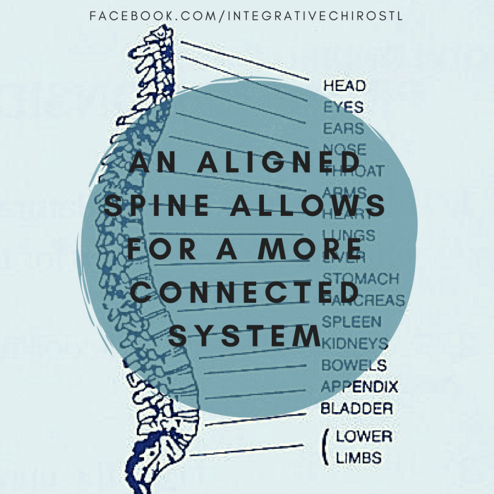 An aligned spine allows for a more connected system