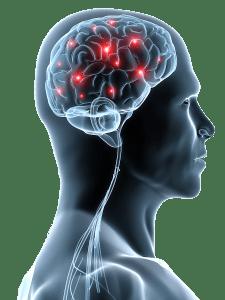 change the brain