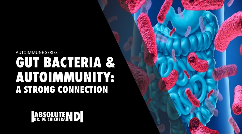 blog cover of autoimmune and gut bacteria connection