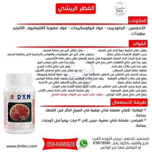الفطر الريشي DXN : لمرضى السرطان ، وضغط الدم ، ومرض السكر ، والبكتيريا