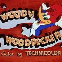 Woody Woodpecker vs Road Runner