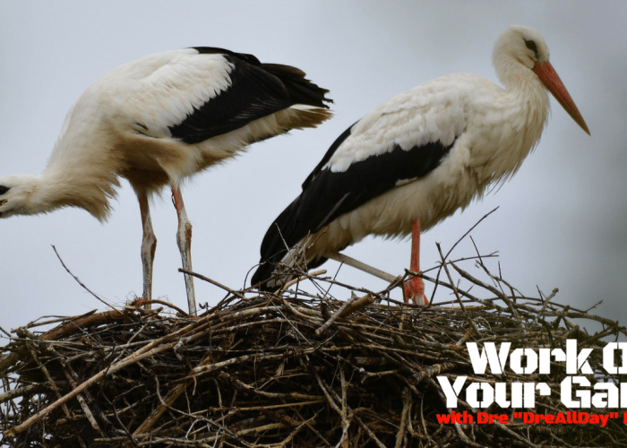 "#797: How To Build Your Foundation's ""Nest,"" One Step At A Time [WOYG Podcast]"