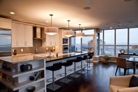 Beautiful Condo Buildout - Dream House Dream Kitchens