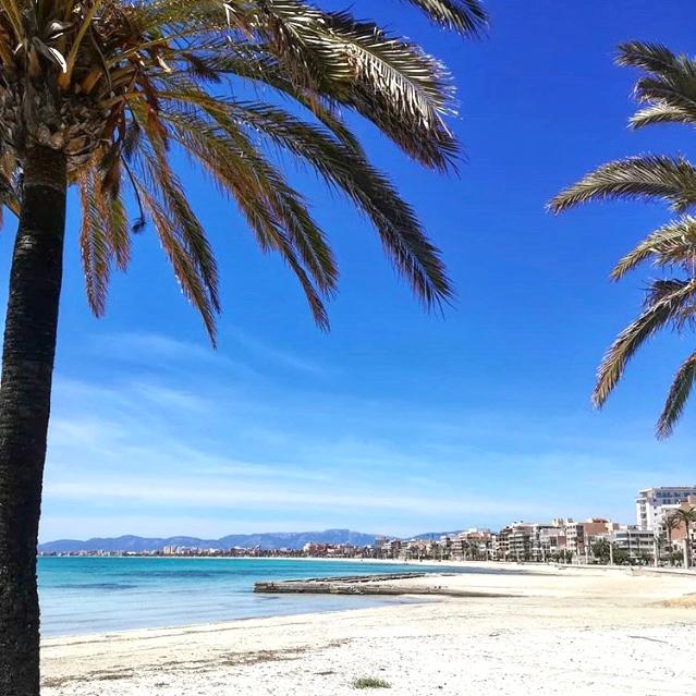 Mallorca Urlaub Playa de Palma