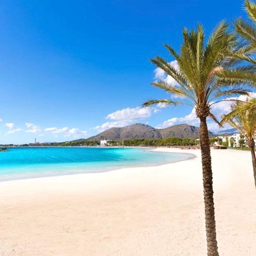 Mallorca Urlaub Alcudia