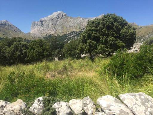 Weltkulturerbe: Das Tramuntana-Gebirge auf Mallorca