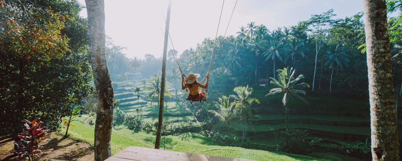 Bali, Rice Fields Ubud