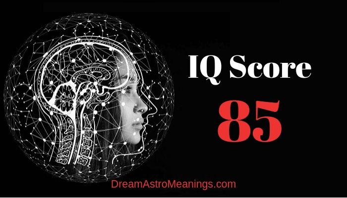 IQ 85 – Score Meaning